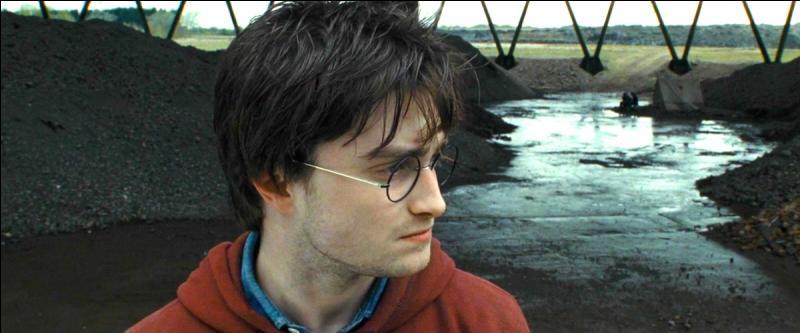 L'enchantement qu'Harry avait hérité de Ronald s'estompa suite à l'assassinat brutal de ce dernier. Harry n'était plus mystifié. Harry était libre.