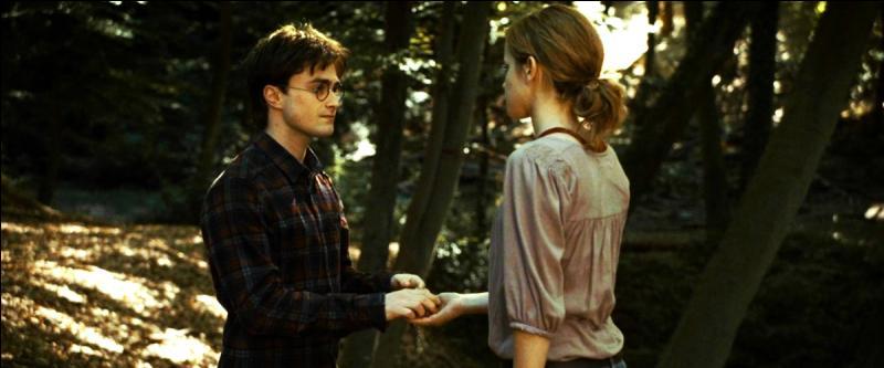 Hermione vit Harry, Harry vit Hermione : l'amour qu'ils se manifestaient l'un pour l'autre jaillit à nouveau et illumina leur cœur.