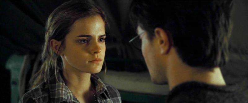 Un jour, les yeux d'Harry croisèrent ceux d'Hermione ; la population, toute acquise à leur cause, scella très vite leur union en décrétant « qu'ils étaient faits l'un pour l'autre ».