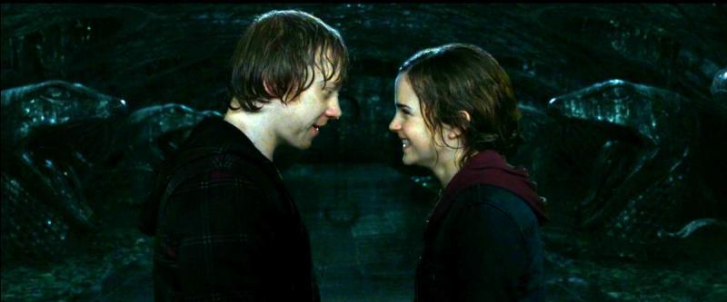Ainsi Hermione fut attirée par Ronald, ainsi Harry tomba sous le charme de Ginny, la jeune sœur du perfide mais pragmatique Ronald.