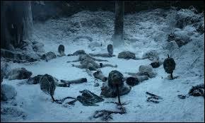 Comment s'appelle le plus long hiver que le monde ait connu ?