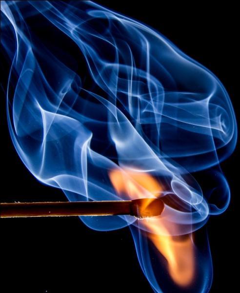 Le spectromètre d'absorption atomique à flamme est utilisé pour déterminer...