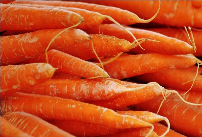 Le maïs et la carotte se sont battus ! Comment appelle-t-on ce type de bagarre ?