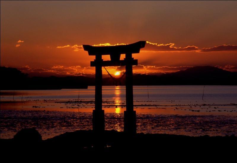 Je me pose parfois cette question existentielle au réveil : pourquoi les habitants du Japon ne sont pas des chevaux ?