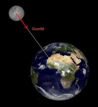 Nous sommes actuellement influencés par la force gravitationnelle. Est-ce vrai ou faux ?