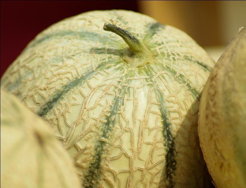 En parlant de fruits, quelle variété de melons bénéficie d'une indication géographique protégée (IGP) ?