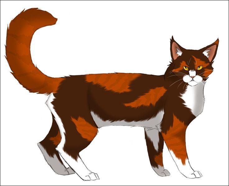 Au Clan du Tonnerre, un des rares mâles écaille est le père d'une chatte bien importante ! Qui est-ce ? Qui est sa fille ?