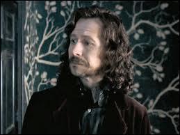 Quels sont les surnoms de Sirius ?