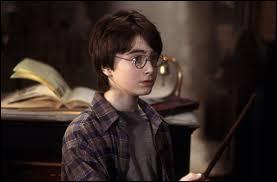 Daniel Radcliffe était dans sa chambre quand il a appris qu'il avait le rôle principal.
