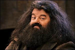 Quel jour Hagrid a-t-il été renvoyé du collège Poudlard ?