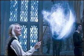 Quel est le sort, parmi ceux dans la liste, qui n'est pas enseigné par Harry Potter ?