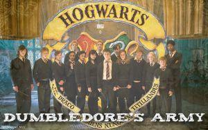 Connaissez-vous vraiment l'armée de Dumbledore ?