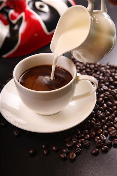 Récolter des grains de café sur des caféiers ? C'est tellement old-school. Le kopi luwak, lui, c'est du bon café récolté dans de la bonne...