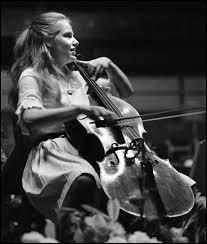 Le violoncelle est un instrument...