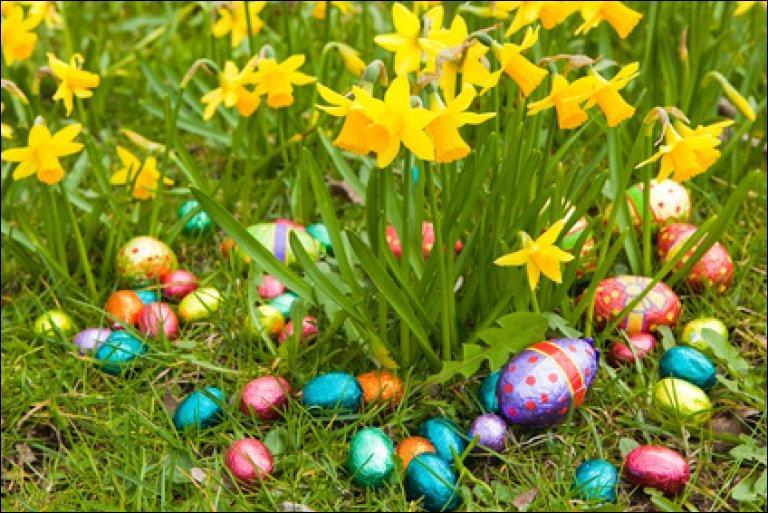 À Pâques, ils sont en chocolat et tu les cherches dans le jardin.