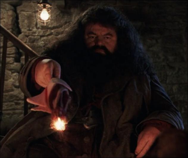 Quand Hagrid entre dans le refuge des Dursley, quelle est la première chose qu'il demande ?