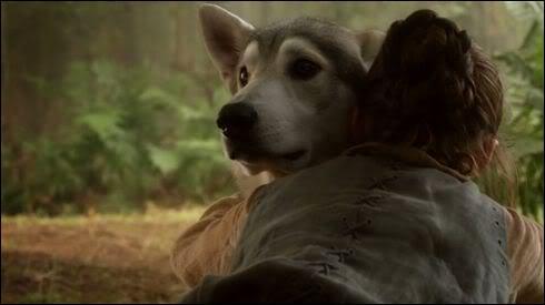 Comment s'appelle le loup géant d'Arya Stark ?