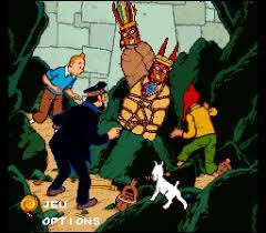 Où va Tintin pour retrouver Tournesol ?