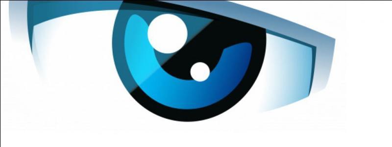 """Jimmy37520 utilise l'œil de """"La Voix"""", de l'émission """"Secret Story"""" comme image de profil. Sur quelle chaîne était diffusée cette émission ?"""