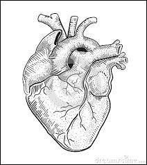 Après ce coup de fil, mon papy a eu une crise cardiaque. Vite, quel spécialiste nous faut-il ?