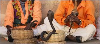 De quel pays sont originaires les charmeurs de serpents ?