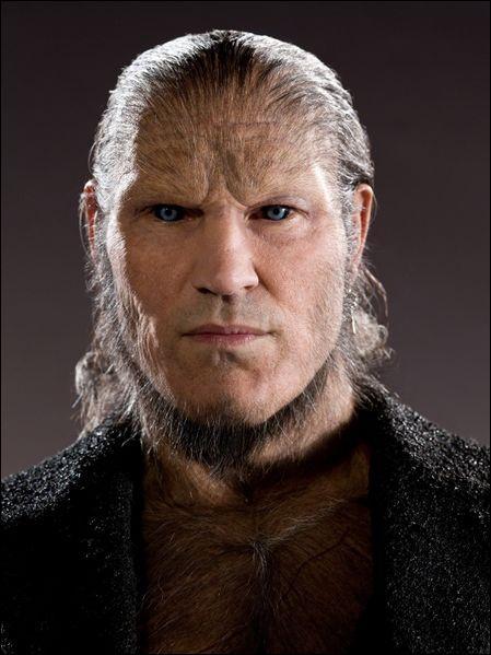 Un tout petit peu de mythologie (non, je n'ai pas pu m'en empêcher...) : d'où provient le prénom de Greyback, le loup-garou à la solde de Voldemort ?
