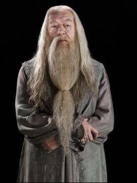 Comment s'appelle précisément le professeur Dumbledore ?