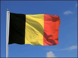 Drapeau : À quel pays correspond le drapeau présenté sur l'image ?