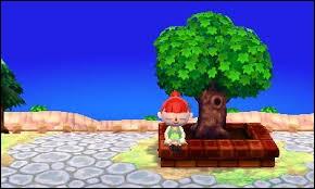 Que se passe-t-il si vous vous asseyez sur la bordure de l'arbre que vous avez planté en arrivant dans la ville ?