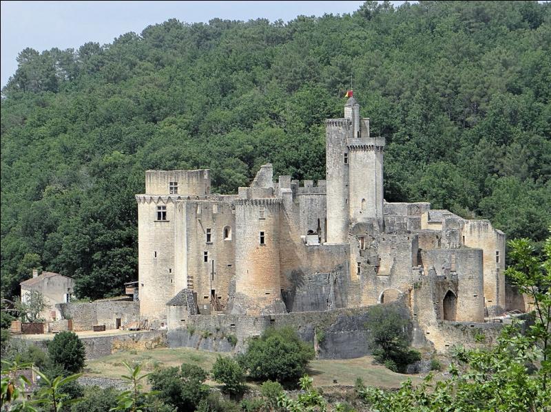 Assistez au Festival de Bonaguil dans cette ville du Lot-et-Garonne dont le territoire est presque entièrement recouvert par la forêt.