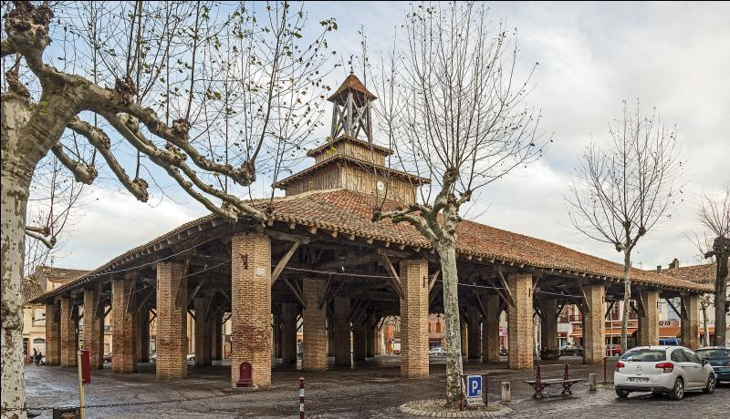 Dans quelle ville de Haute-Garonne se trouve la plus grande et la plus vieille halle de France ?