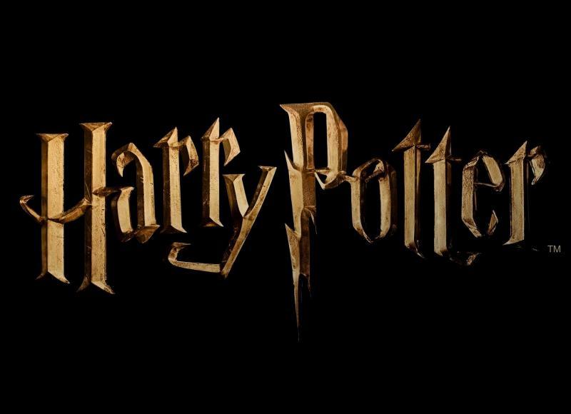 """Dans le premier """"Harry Potter"""", qui est celui qui protège Harry ?"""