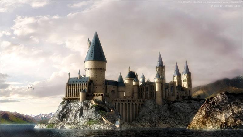 Quelle école fréquente Harry Potter ?