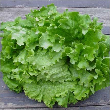 Comment s'appelle ce légume ?