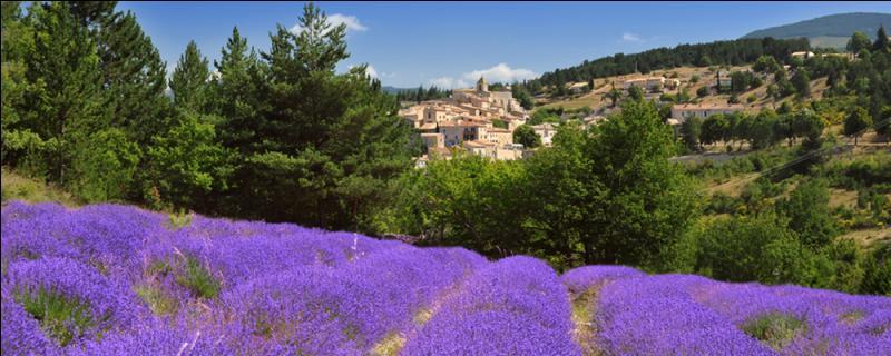 Valréas est le chef-lieu du département de la Drôme.