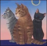 """Qui sont les 3 chats de la prophétie : """"Après le geai aux yeux perçants et le lion rugissant, la paix viendra sur les ailes de la douce colombe."""" ?"""