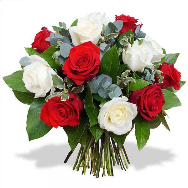 _____ fleurs sont rouges et blanches.