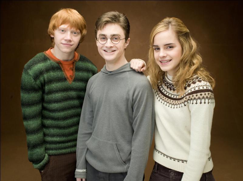 Comment s'appellent les meilleurs amis de Harry ?