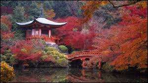 LE JAPON : Selon la tradition japonaise...