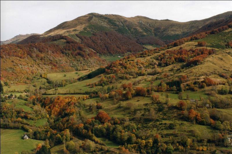 Dans quel massif montagneux français le plateau de Millevaches se situe-t-il ?