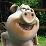 Qui est ce cochon à 'Gratter' ?