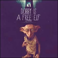 Vladimir Poutine a très bien apprécié sa ressemblance avec Dobby.