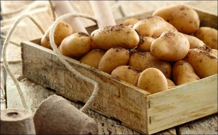 Sa chair, ferme, est de couleur jaune pâle ; cette pomme de terre porte le nom d'une marquise. Cuisinez-la à la vapeur et pour des salades.