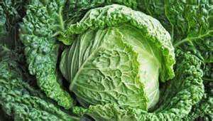 NE43 - Quelques légumes