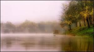 À l'aube, les voiles de brume s'étendent en tissues blèmes au dessus des vallées.Combien y a-t-il de fautes ?