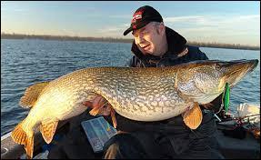 Quelle est la taille du plus grand brochet pêché en France? (la photo de ce beau poisson ne correspond pas au record de France !)