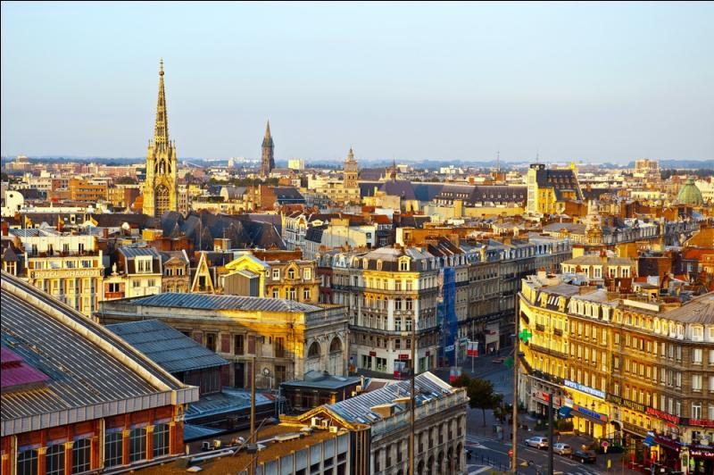 Ville du Nord, près de la frontière belge, cette ville accueillera plusieurs matchs de l'Euro 2016.