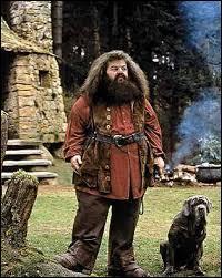 Comment s'appelle le chien domestique qui accompagne Hagrid ?