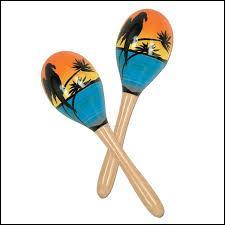 Comment s'appelle cet instrument créé par les Indiens d'Amérique ?