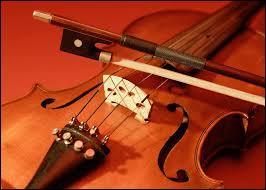 Voici un bel instrument à cordes, comment se nomme-t-il ?